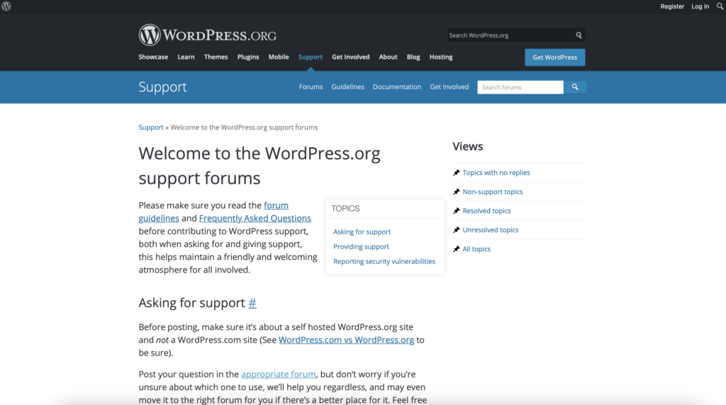 WordPress support service