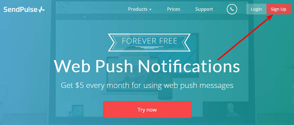 How To Add Web Push Notifications To WordPress With SendPulse 3